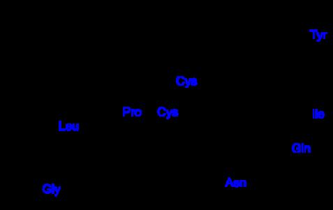512px-Oxytocin.svg